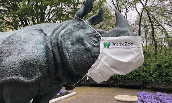 ブロンクス動物園のチケット・駐車場・見どころを徹底解説!